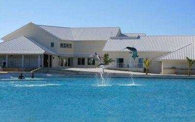 Grand Cayman Location