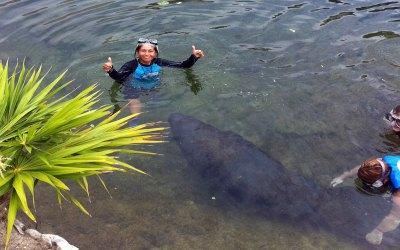 Dolphin Discovery-Isla Mujeres